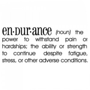 endurance for success